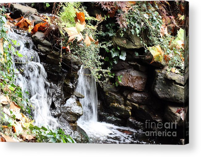 Water Acrylic Print featuring the photograph Fall Waterfall by Lauren Nicholson