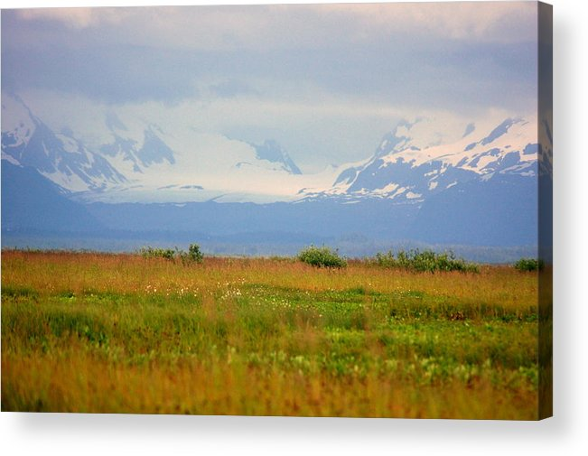 Field Acrylic Print featuring the photograph Field Of Dreams by Ashley Sarem