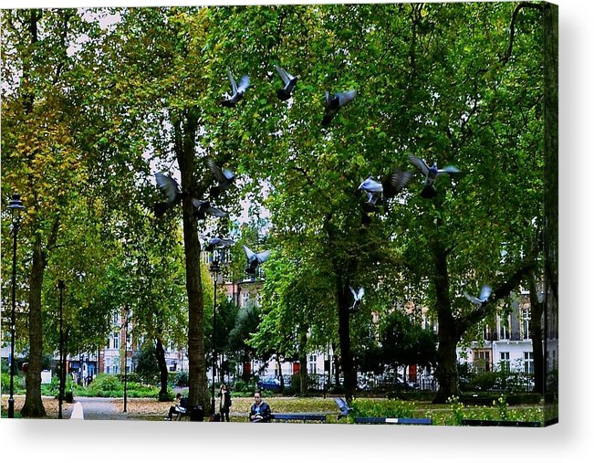 London Acrylic Print featuring the photograph Flight by Helen Esdaile