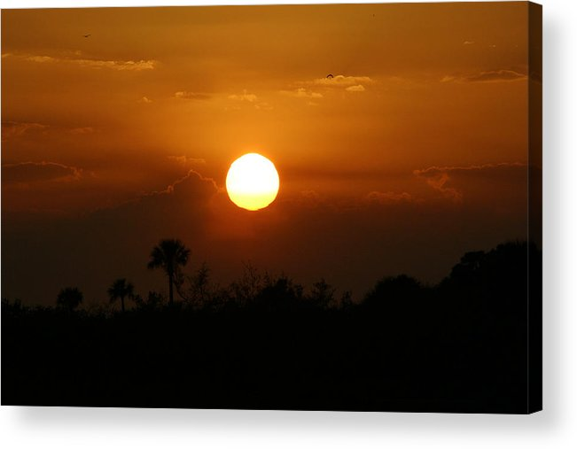Florida Sunset Acrylic Print featuring the photograph Florida Sunset by Jeanne Andrews