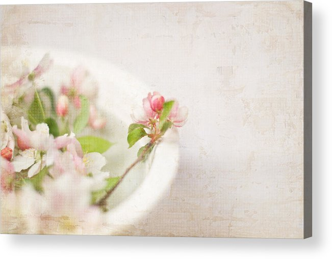 Photograph Acrylic Print featuring the photograph Flowering Crabapple In Bowl by Cheryl McCain
