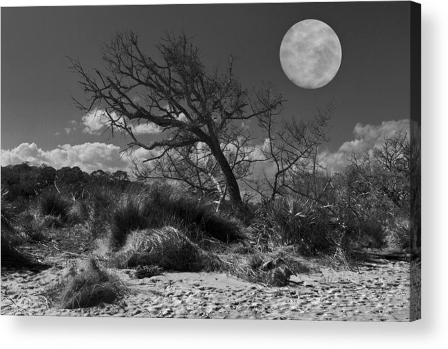 Fine Acrylic Print featuring the photograph Full Moon Over Jekyll by Debra and Dave Vanderlaan