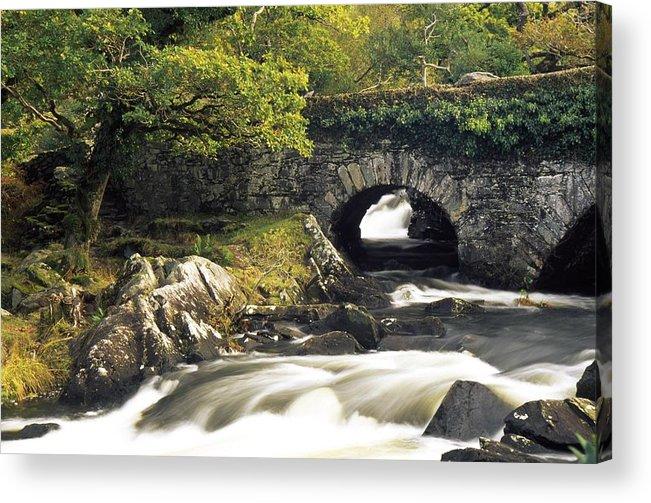 Biosphere Acrylic Print featuring the photograph Galways Bridge, Killarney National by Richard Cummins