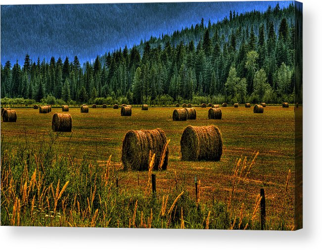 Priest Lake Acrylic Print featuring the photograph Hay Bales II by David Patterson