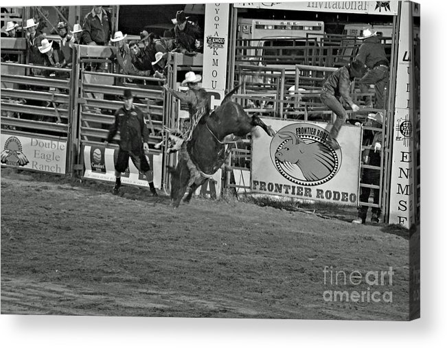 Bull Riding Acrylic Print featuring the photograph Hold On For 8 by Shawn Naranjo