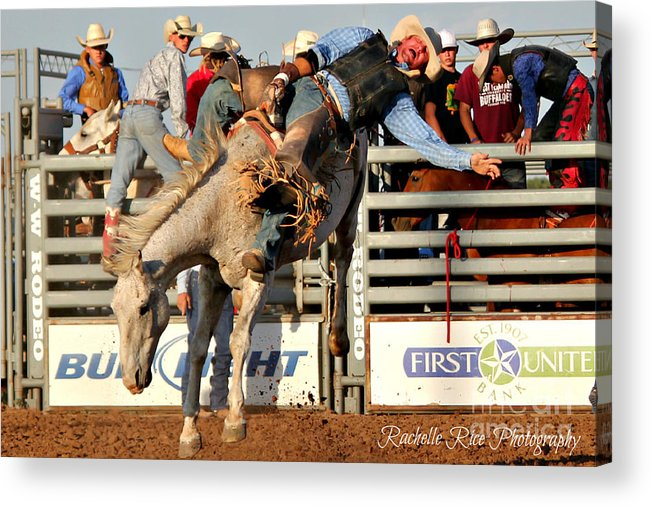 Bareback Acrylic Print featuring the photograph Holding On Tight by Rachelle Rice
