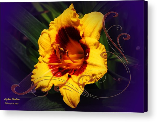 Yellow Acrylic Print featuring the photograph Hope by Itzhak Richter