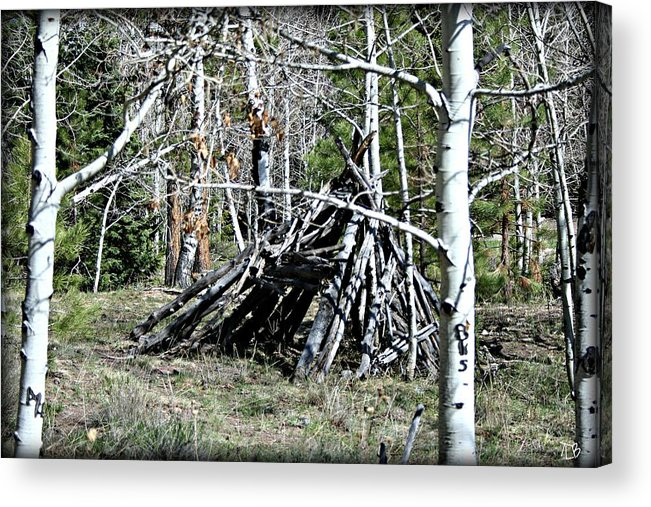Outdoor Acrylic Print featuring the photograph Hut by Treena Bridges