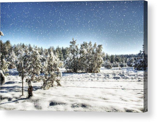 Winter Acrylic Print featuring the photograph I'm Dreaming Of A White Christmas by Saija Lehtonen