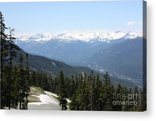 Acrylic Print featuring the photograph Img0097 by Jane Whyte