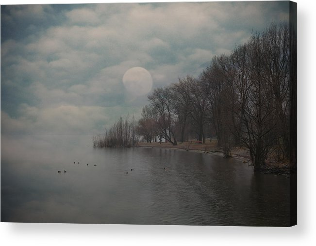 Bay Acrylic Print featuring the photograph Landscape Of Dreams by Joana Kruse