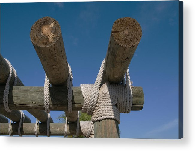 Logs Acrylic Print featuring the photograph Logs Tied With Rope by Carl Purcell