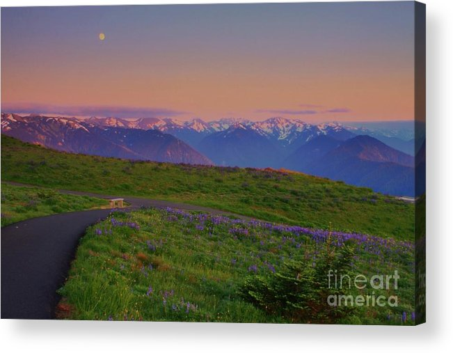Landscape Acrylic Print featuring the photograph Lone Bench At Sunset by Angela Q
