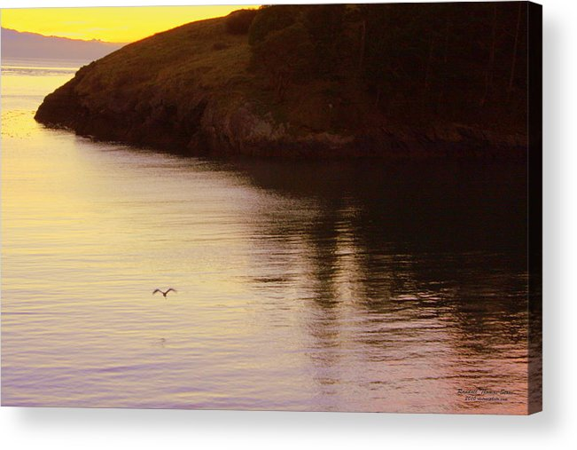 Sunset Acrylic Print featuring the photograph Lone Bird At Rosario Beach Point by Randall Thomas Stone