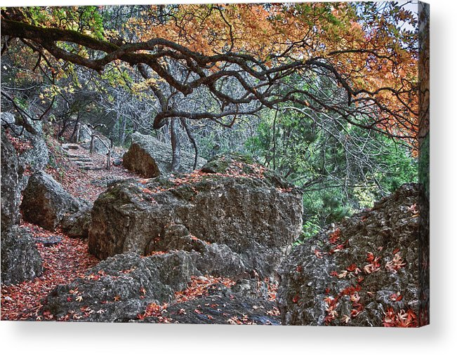 Landscape Acrylic Print featuring the photograph Lost Maples Hiking Trail by James Woody