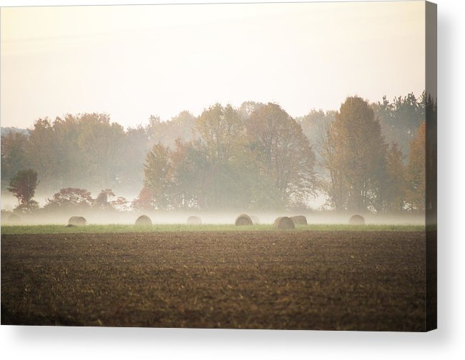 Mist Acrylic Print featuring the photograph Misty Haystacks by Elaine Mikkelstrup
