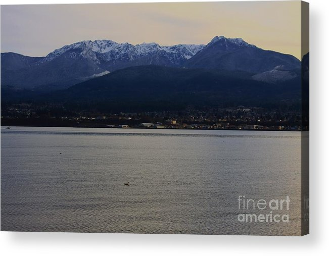 Landscape Acrylic Print featuring the photograph Olympic Mountains by Angela Q