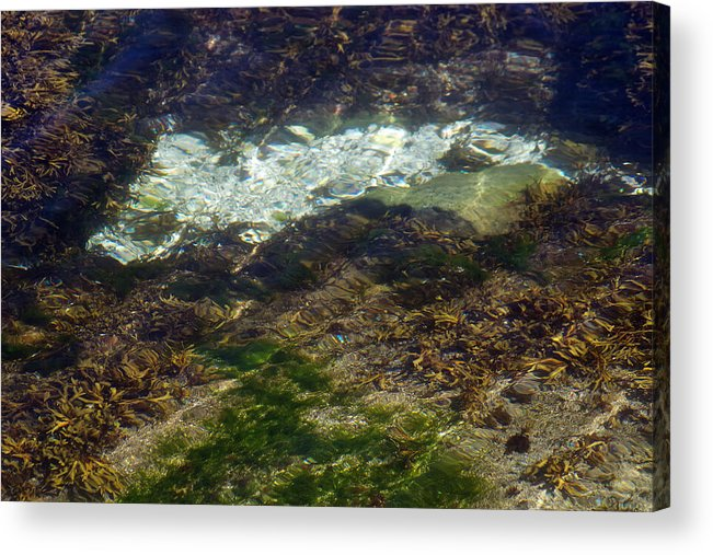 Ripples Acrylic Print featuring the photograph Pacific Calm 2 by David Kleinsasser