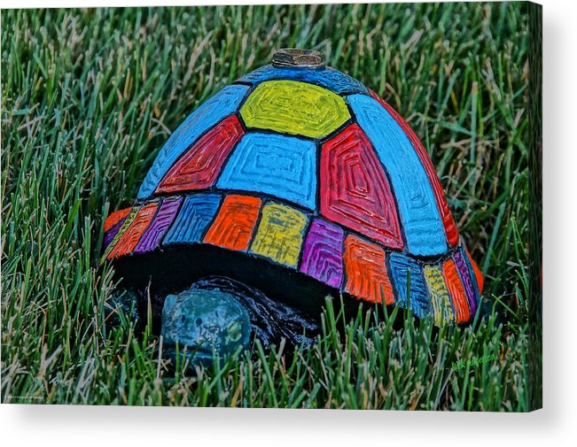 Painted Acrylic Print featuring the photograph Painted Turtle Sprinkler by Mick Anderson