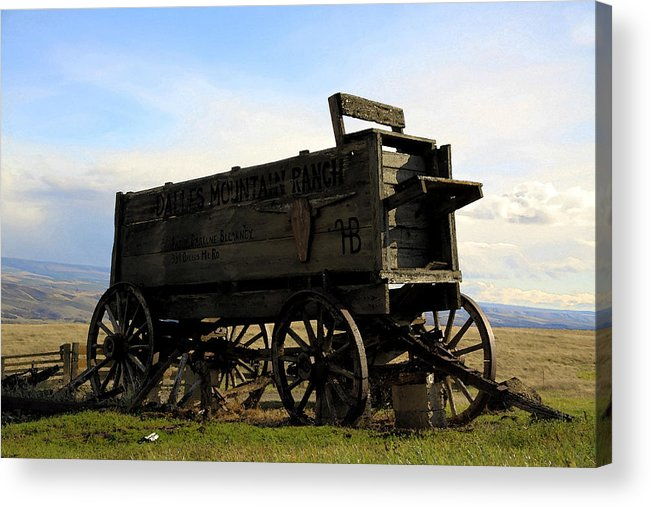 Barnwood Acrylic Print featuring the photograph Painted Wagon by Steve McKinzie