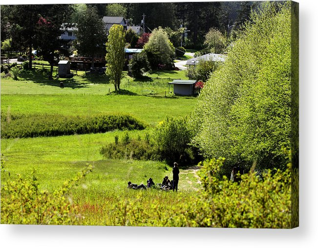 Pastoral Landscape Acrylic Print featuring the photograph Pastoral Ease by Marie Jamieson