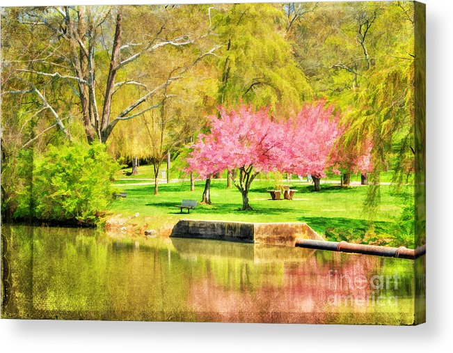 Asian Acrylic Print featuring the photograph Peaceful Spring II by Darren Fisher