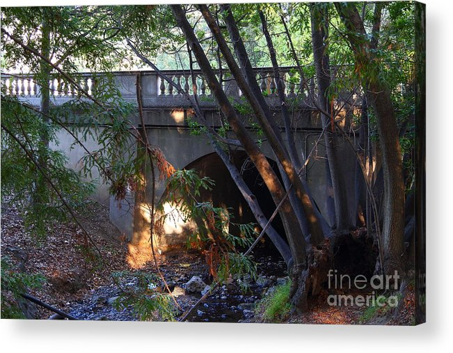 Architecture Acrylic Print featuring the photograph Pedestrian Bridge And Strawberry Creek . 7d10132 by Wingsdomain Art and Photography