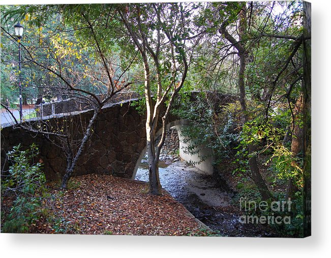 Architecture Acrylic Print featuring the photograph Pedestrian Bridge And Strawberry Creek . 7d10152 by Wingsdomain Art and Photography