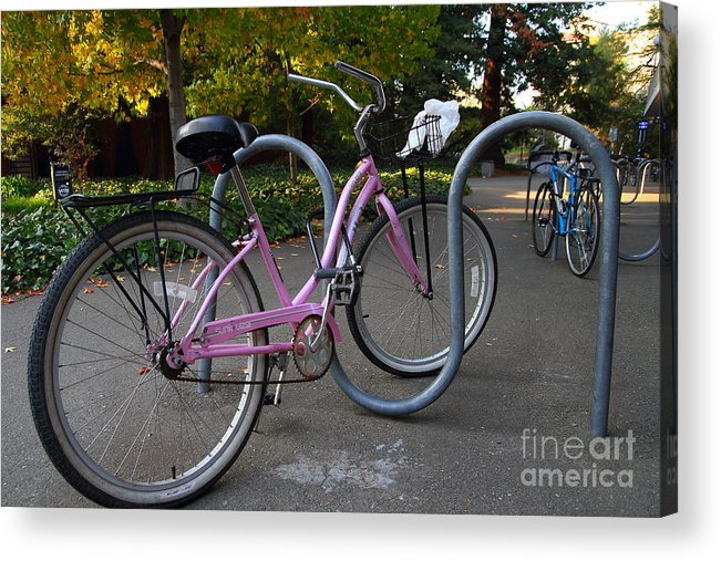 Transportation Acrylic Print featuring the photograph Pink Bicycle . 7d10159 by Wingsdomain Art and Photography