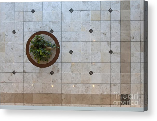 Architecture Acrylic Print featuring the photograph Potted Plant In Foyer Floor From Above by Will & Deni McIntyre