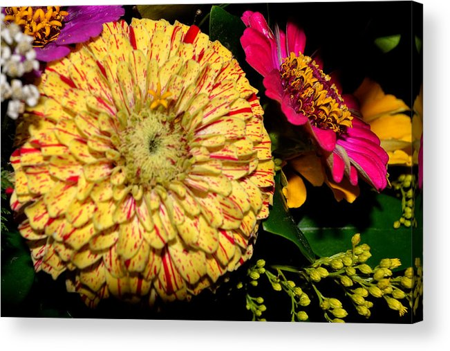 Yellow Acrylic Print featuring the photograph Pretty Flowers by Kelly Reber