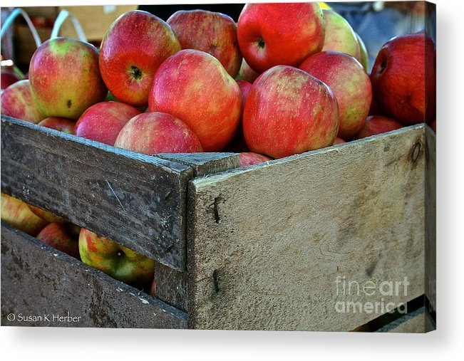 Outdoors Acrylic Print featuring the photograph Ready To Eat by Susan Herber
