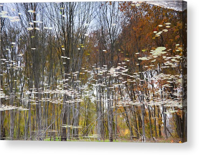 Horizontal Photographs Acrylic Print featuring the photograph Reflections 4 by Michael Filonow