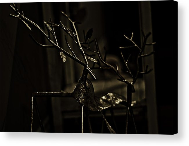 Reindeer Acrylic Print featuring the photograph Reindeer Sleighs Are You Listening by Kelly Hayner
