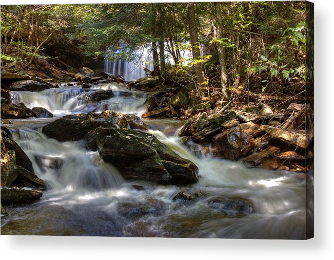Acrylic Print featuring the photograph Ricketts Glen State Park by John C McPherson