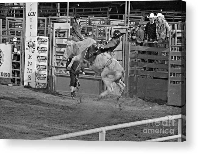 Bull Riding Acrylic Print featuring the photograph Ride 'em Cowboy by Shawn Naranjo