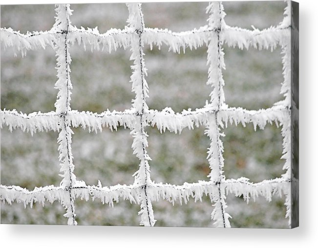 Frost Acrylic Print featuring the photograph Rime Covered Fence by Christine Till