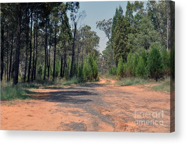 Road Acrylic Print featuring the photograph Road To Nowhere by Joanne Kocwin