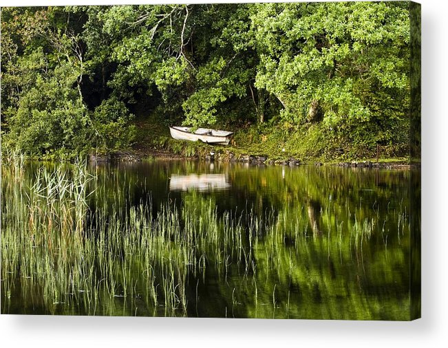 Outdoors Acrylic Print featuring the photograph Rowboat Moored On The Bank Of A Lake by Peter McCabe