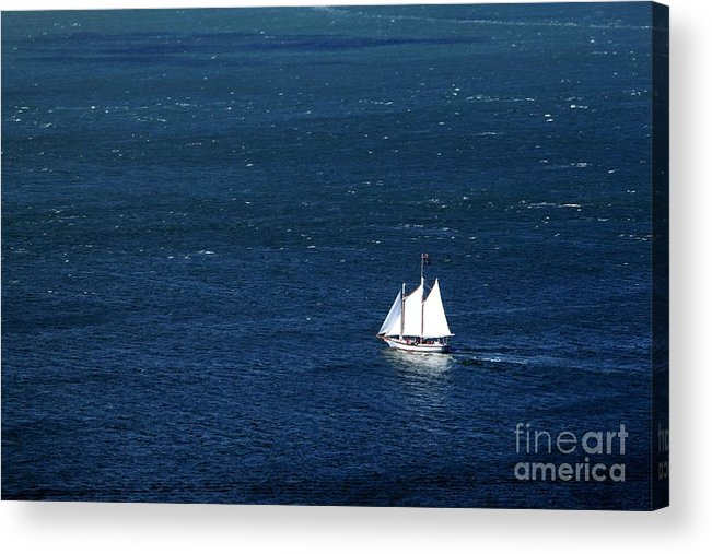 Water Acrylic Print featuring the photograph Sailboat by Henrik Lehnerer