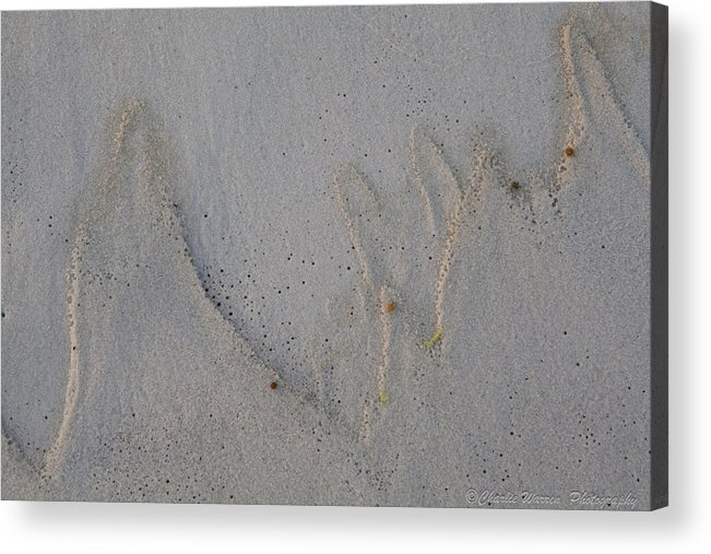 Sand Acrylic Print featuring the pyrography Sand Mountains by Charles Warren