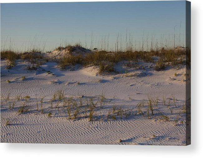 Sand Dunes Acrylic Print featuring the photograph Seaside Dunes 4 by Charles Warren