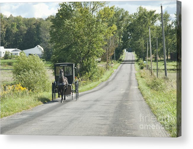 Amish Acrylic Print featuring the photograph September Roads by David Arment