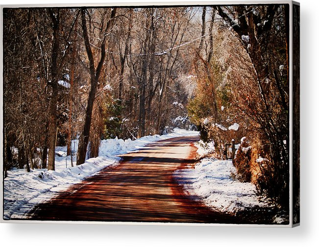 Road Acrylic Print featuring the photograph Shadowy Path by Lisa Spencer