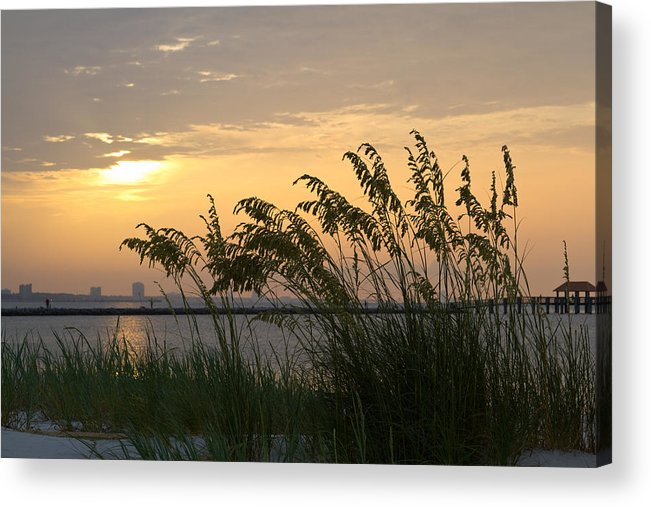 Landscape Acrylic Print featuring the photograph Softly Swaying by Diane Carlisle