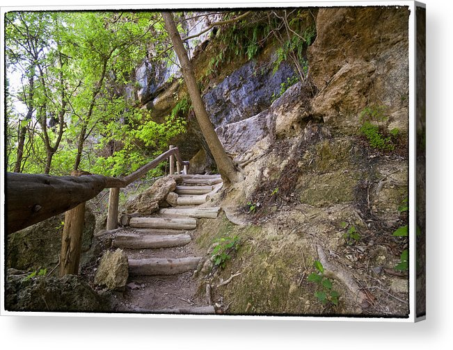 Hamilton Pool Acrylic Print featuring the photograph Steps To The Cave by Lisa Spencer