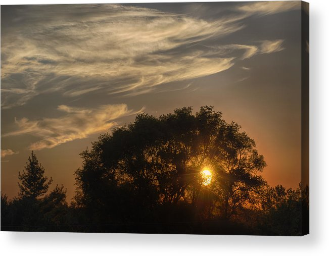 Joan Carroll Acrylic Print featuring the photograph Sunset At The Oasis by Joan Carroll
