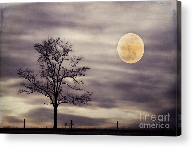 Alone Acrylic Print featuring the photograph Super Moon by Darren Fisher