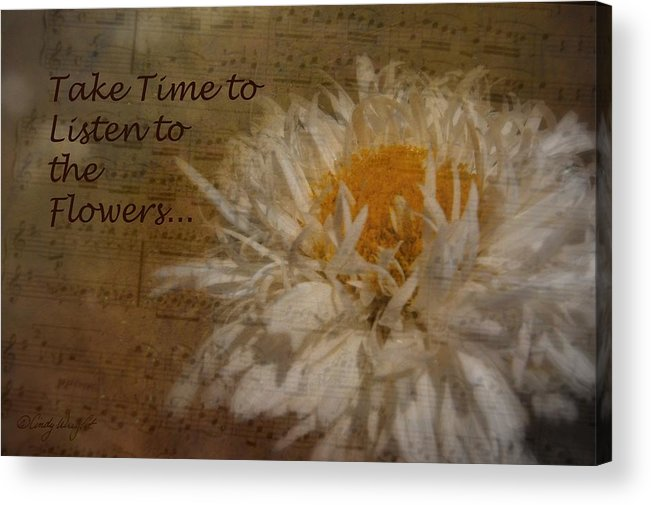 Cindy Acrylic Print featuring the photograph Take Time by Cindy Wright