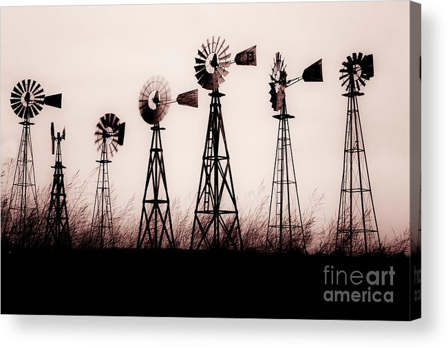 Texas Acrylic Print featuring the photograph Texas Windmills by Tamyra Ayles